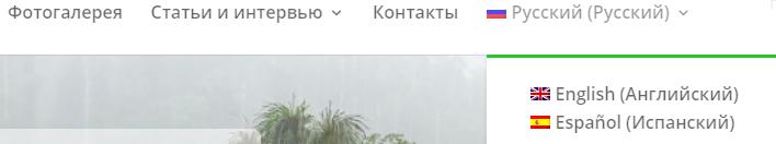 WPML, Divi, HostPro, хостинг, Украина